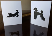 Poodle Note / Greeting Cards